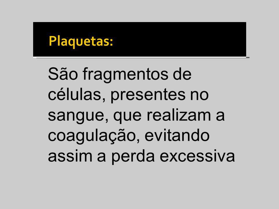 São fragmentos de células, presentes no sangue, que realizam a coagulação, evitando assim a perda excessiva