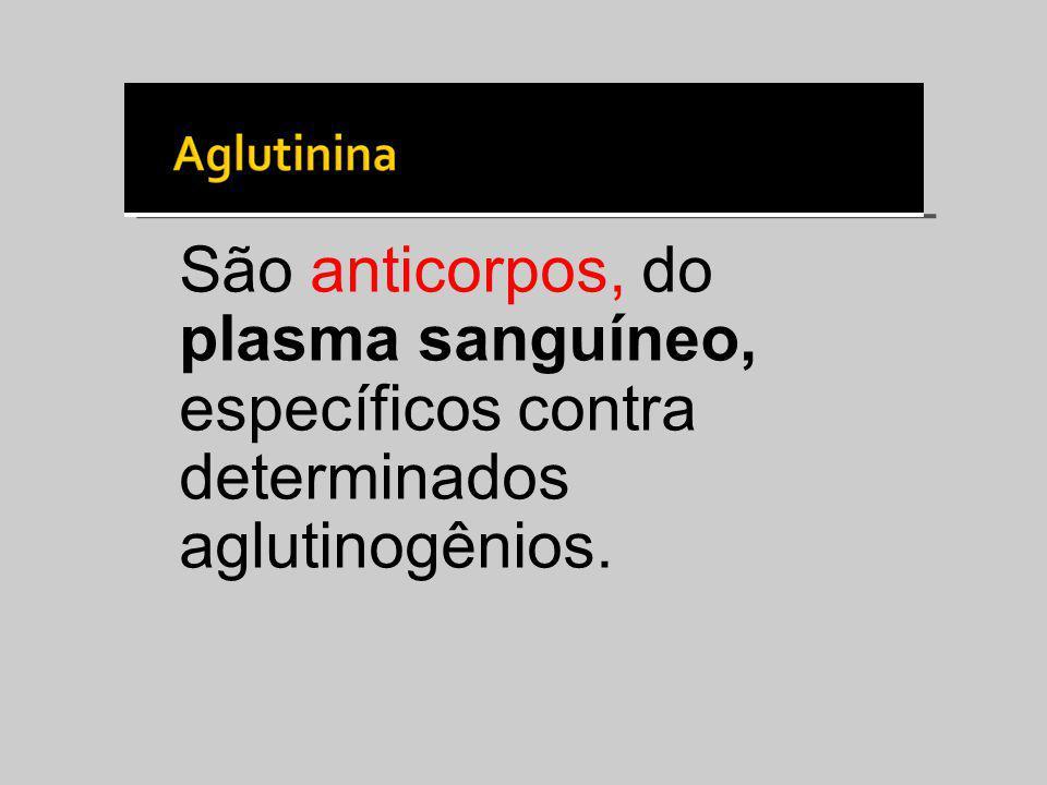 São anticorpos, do plasma sanguíneo, específicos contra determinados aglutinogênios.