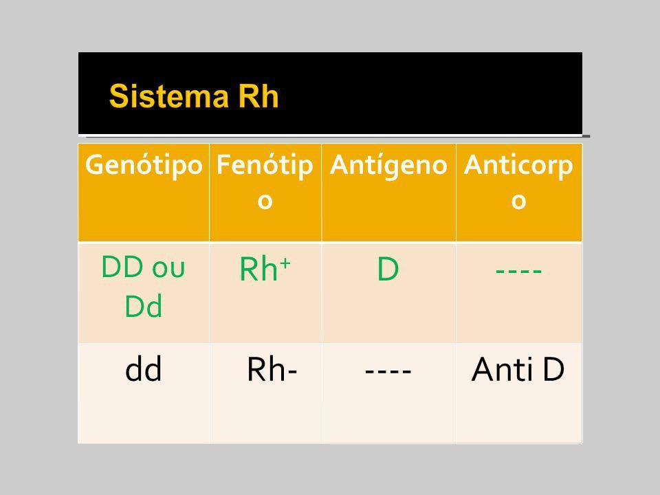 GenótipoFenótip o AntígenoAnticorp o DD ou Dd Rh + D---- dd Rh-----Anti D