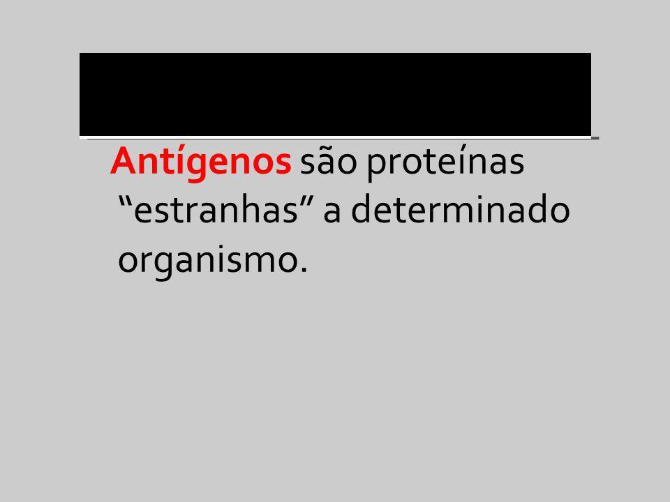 Antígenos são proteínas estranhas a determinado organismo.