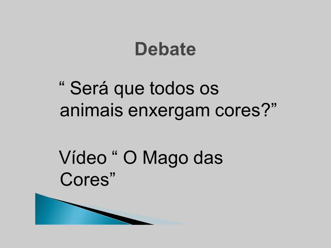 Debate Será que todos os animais enxergam cores Vídeo O Mago das Cores