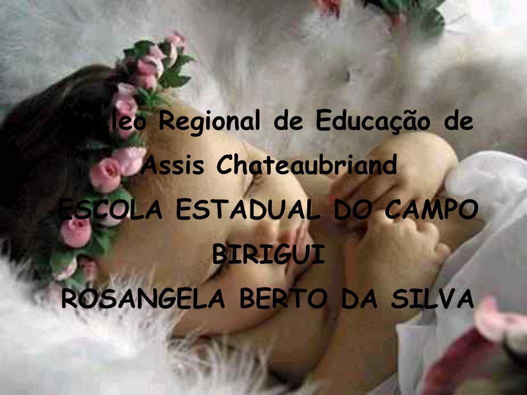 Núcleo Regional de Educação de Assis Chateaubriand ESCOLA ESTADUAL DO CAMPO BIRIGUI ROSANGELA BERTO DA SILVA
