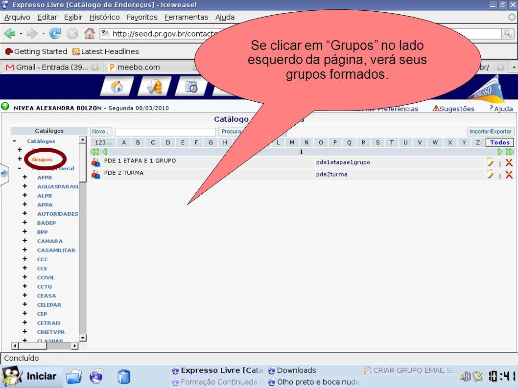 Para escrever um e-mail para o grupo pode clicar sobre o nome do seu grupo que ele automaticamente abrirá a janela de email.