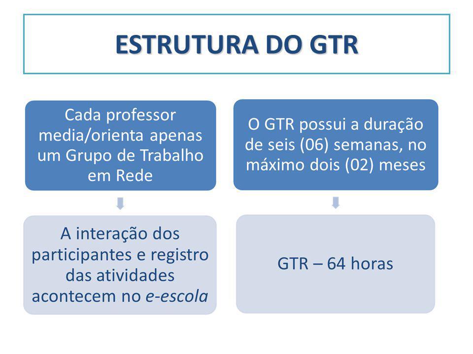 ESTRUTURA DO GTR