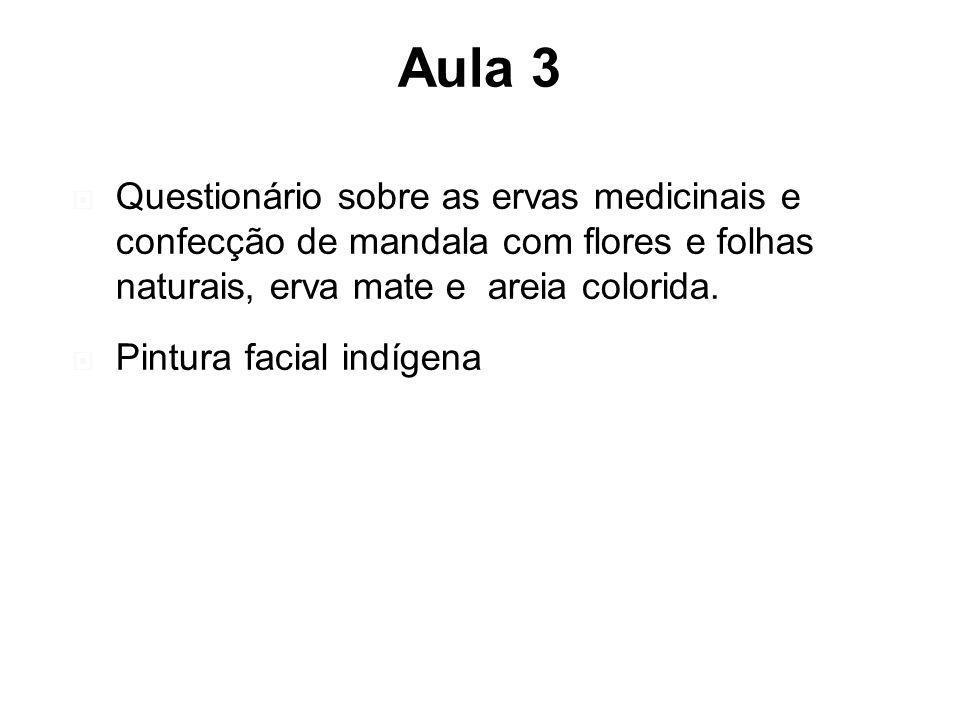 Aula 3 Questionário sobre as ervas medicinais e confecção de mandala com flores e folhas naturais, erva mate e areia colorida. Pintura facial indígena