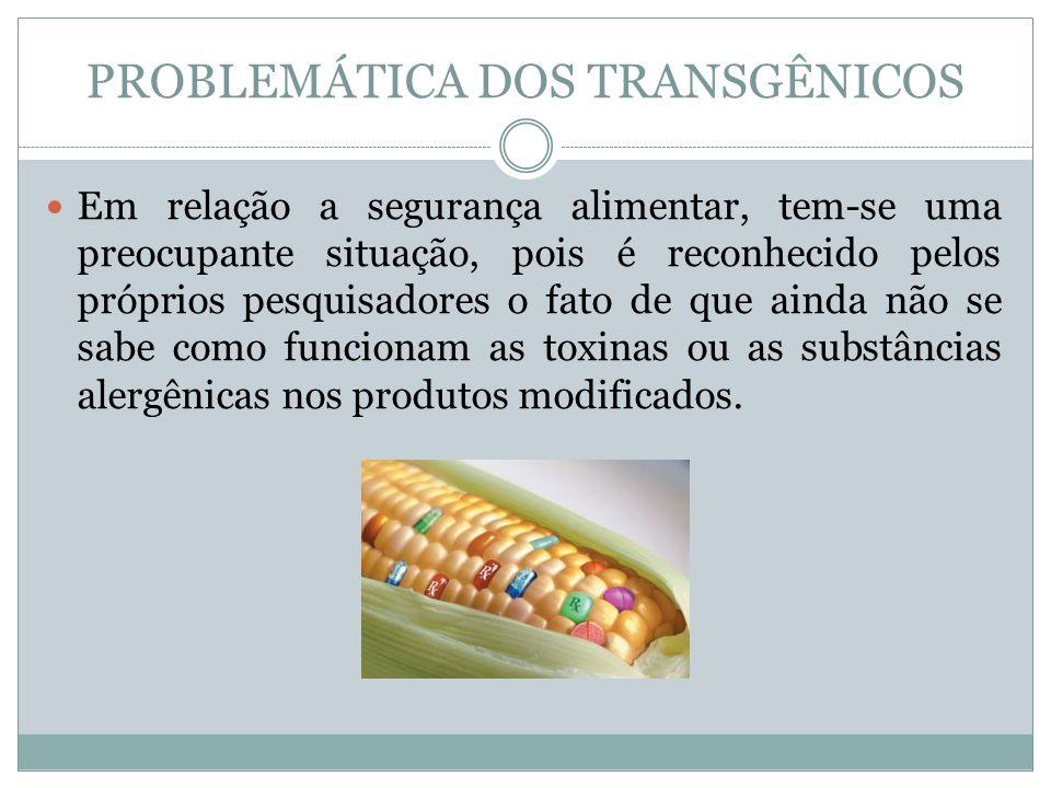 PROBLEMÁTICA DOS TRANSGÊNICOS Em relação a segurança alimentar, tem-se uma preocupante situação, pois é reconhecido pelos próprios pesquisadores o fat