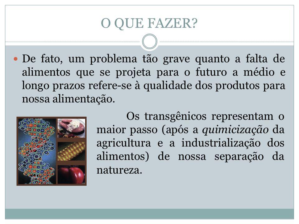 De fato, um problema tão grave quanto a falta de alimentos que se projeta para o futuro a médio e longo prazos refere-se à qualidade dos produtos para