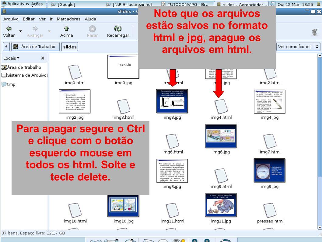 Note que os arquivos estão salvos no formato html e jpg, apague os arquivos em html. Para apagar segure o Ctrl e clique com o botão esquerdo mouse em