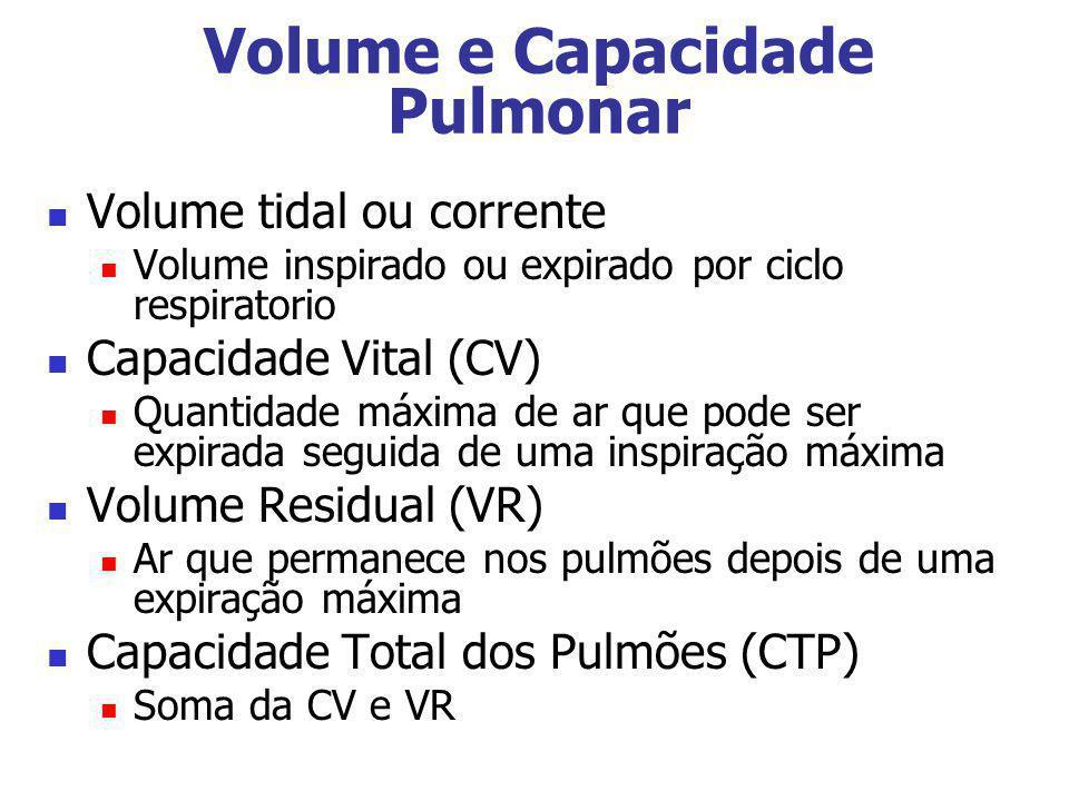 Volume e Capacidade Pulmonar Volume tidal ou corrente Volume inspirado ou expirado por ciclo respiratorio Capacidade Vital (CV) Quantidade máxima de a