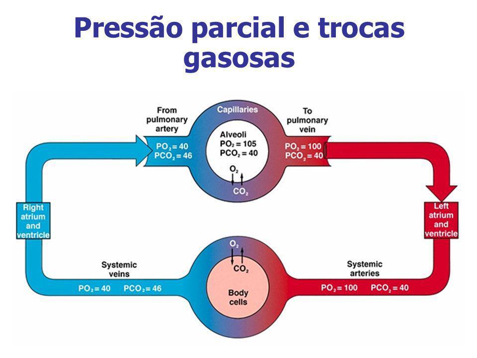 Pressão parcial e trocas gasosas