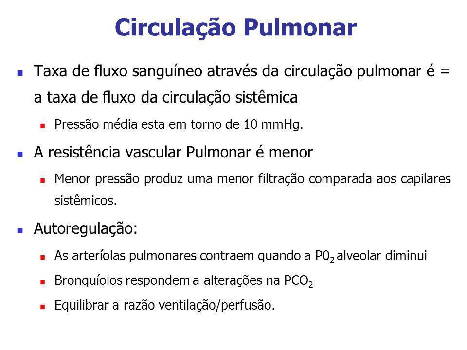 Circulação Pulmonar Taxa de fluxo sanguíneo através da circulação pulmonar é = a taxa de fluxo da circulação sistêmica Pressão média esta em torno de