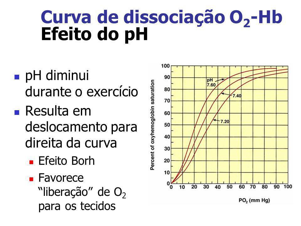 Curva de dissociação O 2 -Hb Efeito do pH pH diminui durante o exercício Resulta em deslocamento para direita da curva Efeito Borh Favorece liberação