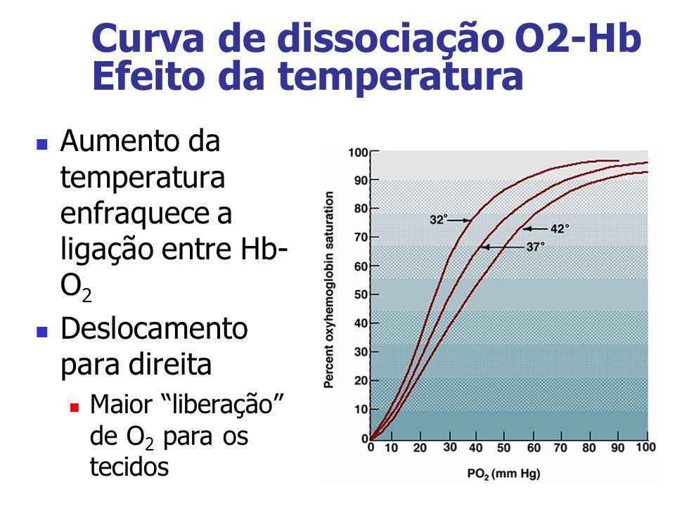 Aumento da temperatura enfraquece a ligação entre Hb- O 2 Deslocamento para direita Maior liberação de O 2 para os tecidos Curva de dissociação O2-Hb