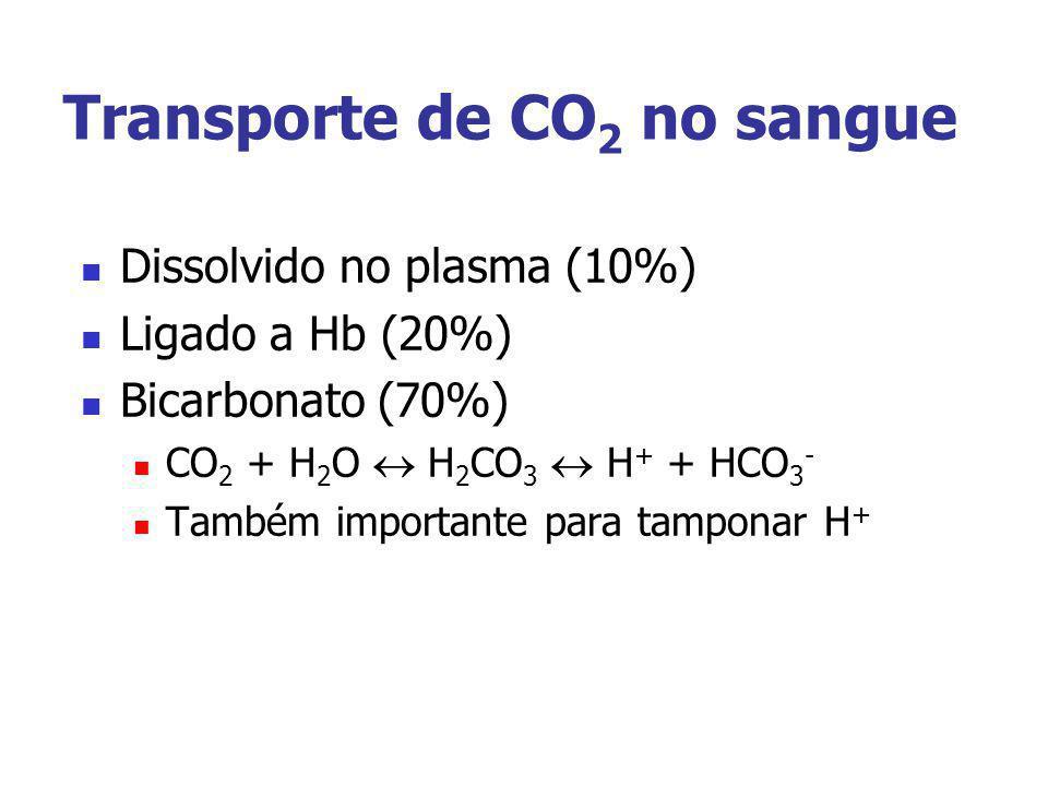Transporte de CO 2 no sangue Dissolvido no plasma (10%) Ligado a Hb (20%) Bicarbonato (70%) CO 2 + H 2 O H 2 CO 3 H + + HCO 3 - Também importante para