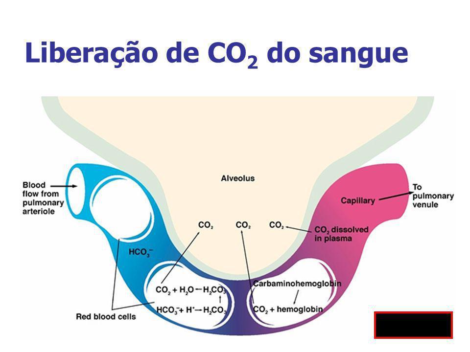 Liberação de CO 2 do sangue Fig 10.19
