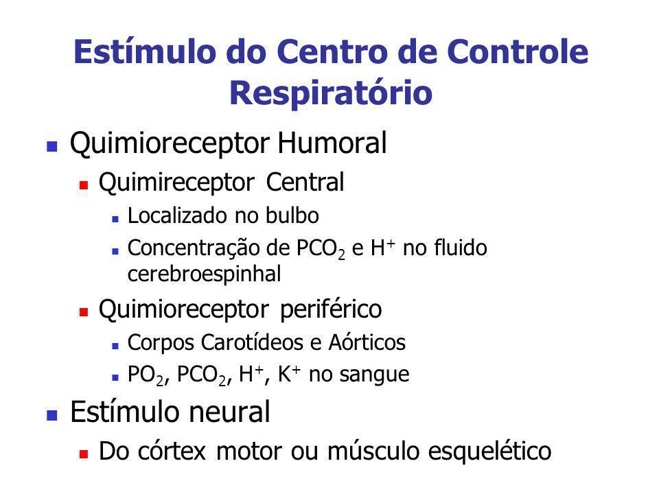 Estímulo do Centro de Controle Respiratório Quimioreceptor Humoral Quimireceptor Central Localizado no bulbo Concentração de PCO 2 e H + no fluido cer