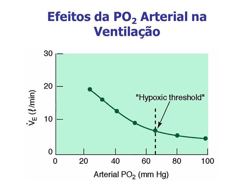 Efeitos da PO 2 Arterial na Ventilação
