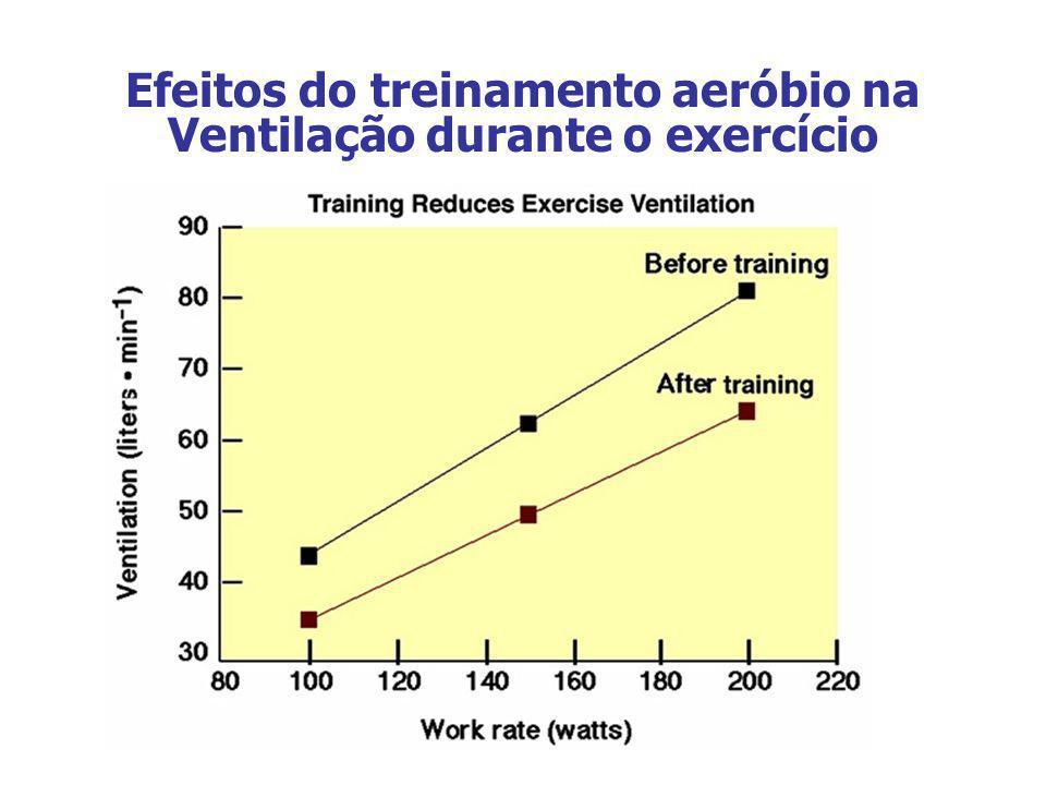 Efeitos do treinamento aeróbio na Ventilação durante o exercício