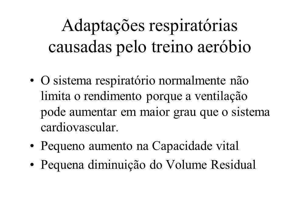 Adaptações respiratórias causadas pelo treino aeróbio O sistema respiratório normalmente não limita o rendimento porque a ventilação pode aumentar em