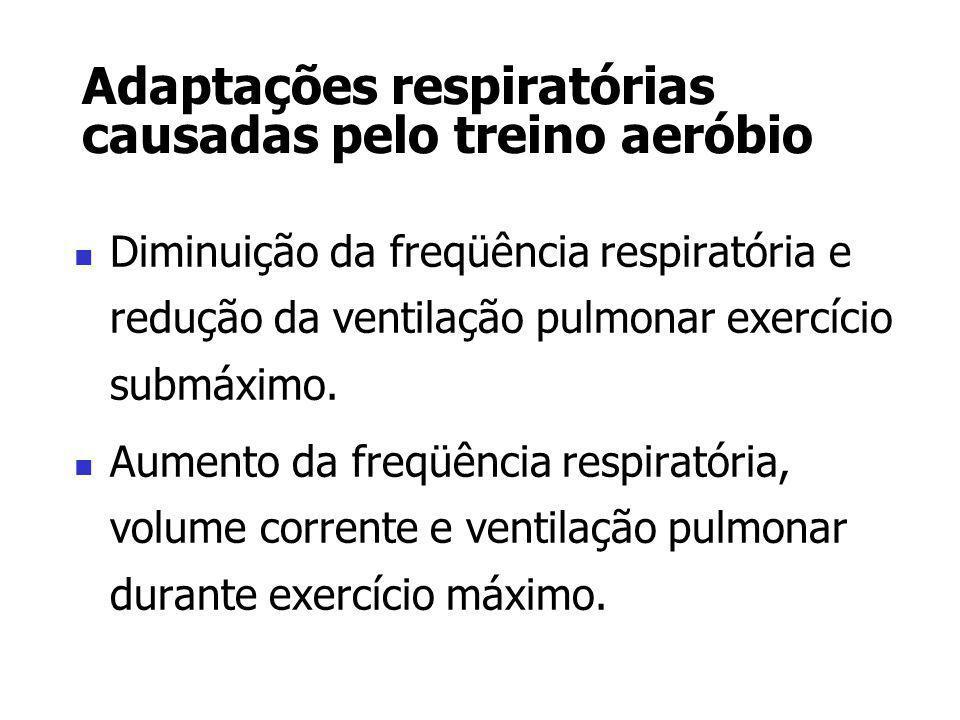 Adaptações respiratórias causadas pelo treino aeróbio Diminuição da freqüência respiratória e redução da ventilação pulmonar exercício submáximo. Aume