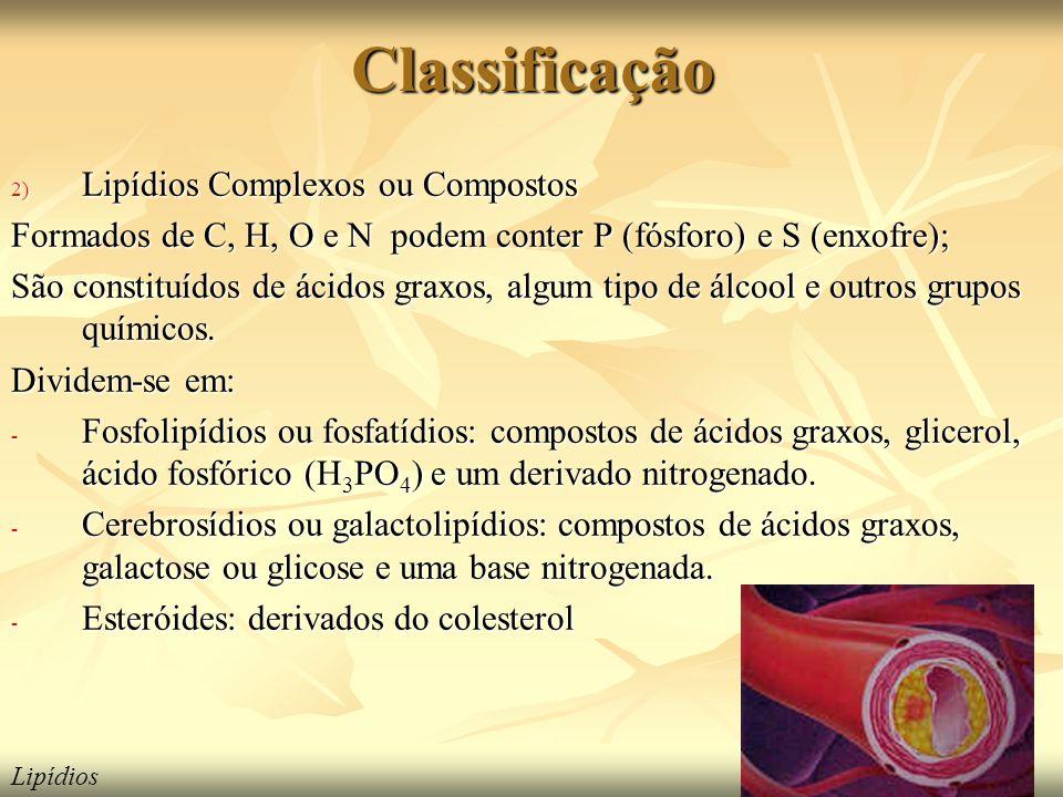 Classificação 2) Lipídios Complexos ou Compostos Formados de C, H, O e N podem conter P (fósforo) e S (enxofre); São constituídos de ácidos graxos, algum tipo de álcool e outros grupos químicos.