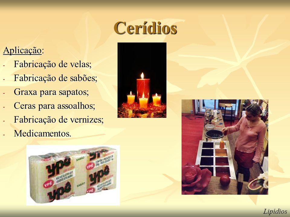 Cerídios Aplicação: - Fabricação de velas; - Fabricação de sabões; - Graxa para sapatos; - Ceras para assoalhos; - Fabricação de vernizes; - Medicamentos.