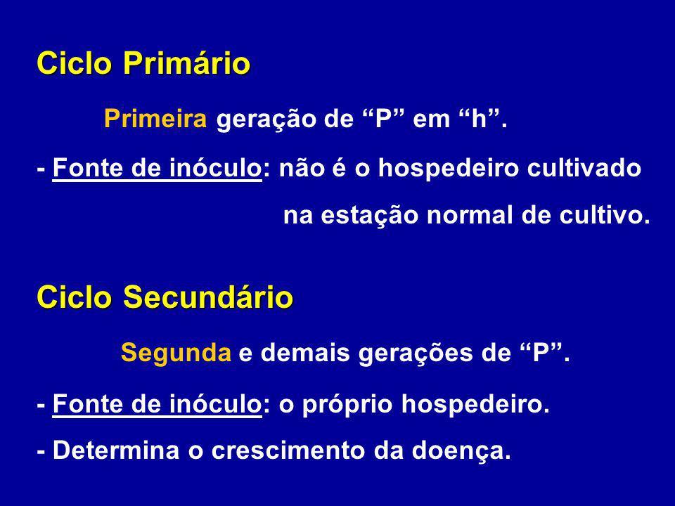 Ciclo Primário Primeira geração de P em h. - Fonte de inóculo: não é o hospedeiro cultivado na estação normal de cultivo. Ciclo Secundário Segunda e d