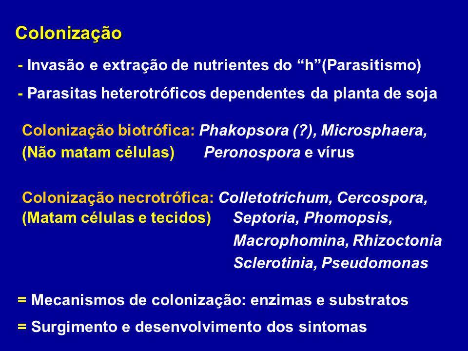 Colonização Colonização - Invasão e extração de nutrientes do h(Parasitismo) - Parasitas heterotróficos dependentes da planta de soja Colonização biot
