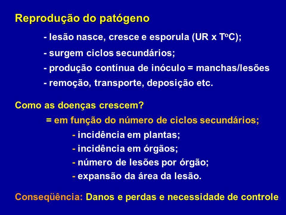 Reprodução do patógeno - lesão nasce, cresce e esporula (UR x T o C); - surgem ciclos secundários; - produção contínua de inóculo = manchas/lesões - r