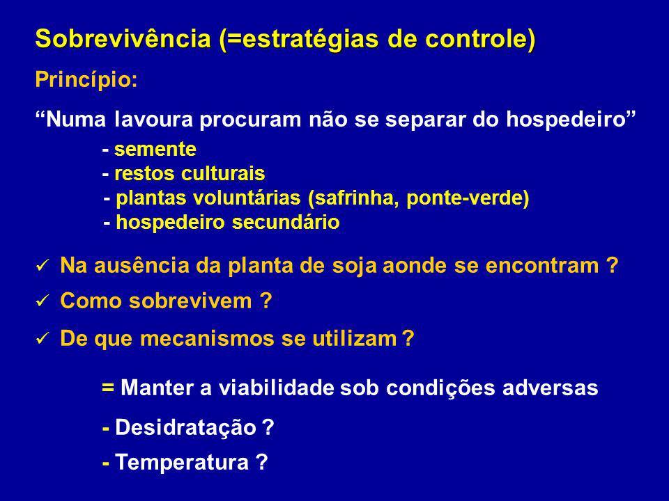 Sobrevivência (=estratégias de controle) Princípio: Numa lavoura procuram não se separar do hospedeiro - semente - restos culturais - plantas voluntár