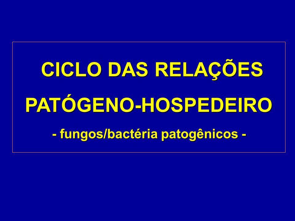 Podem ser: b) planta doente viva - safra normal, safrinha, planta voluntária* biotróficos - Phakopsora, Microsphaera, Peronospora Vírus necrotróficos - Colletotrichum, Septoria, Cercospora, Phomopsis, Rhizoctonia, Macrophomina, Fusarium, Sclerotinia, Sclerotium, Pseudomonas *PV = plantio direto X população plantas voluntárias Fontes de Inóculo
