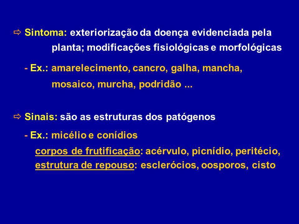 Sintoma: exteriorização da doença evidenciada pela planta; modificações fisiológicas e morfológicas - Ex.: amarelecimento, cancro, galha, mancha, mosa