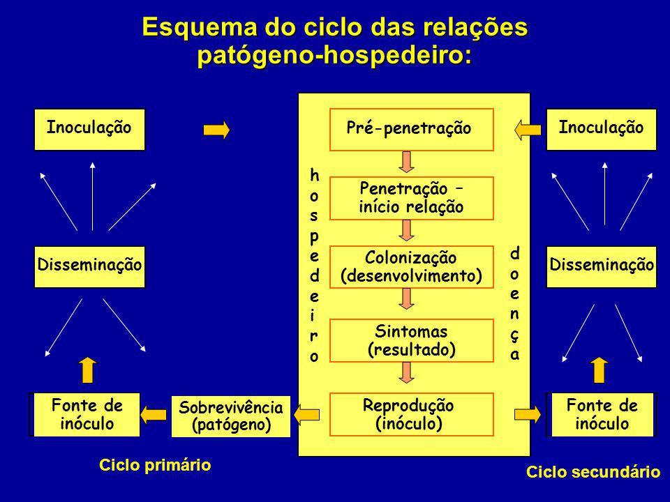 Esquema do ciclo das relações patógeno-hospedeiro: Pré-penetração hospedeirohospedeiro doençadoença Penetração – início relação Colonização (desenvolv