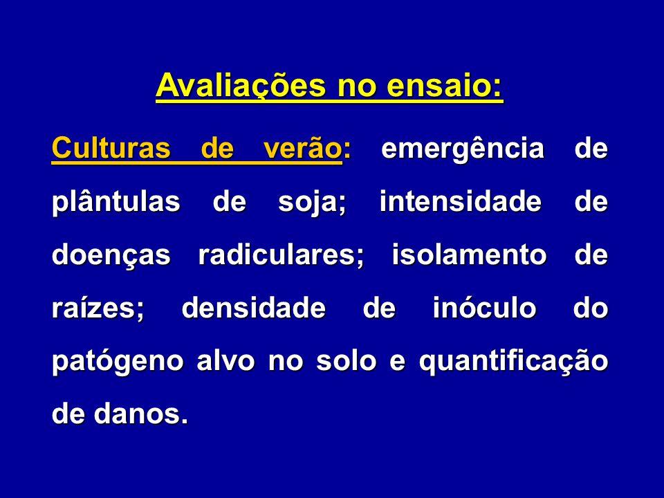 Avaliações no ensaio: Culturas de verão: emergência de plântulas de soja; intensidade de doenças radiculares; isolamento de raízes; densidade de inócu