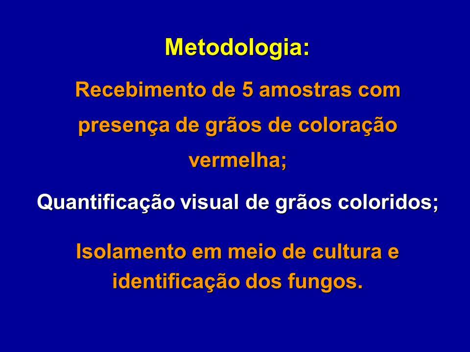 Metodologia: Recebimento de 5 amostras com presença de grãos de coloração vermelha; Quantificação visual de grãos coloridos; Isolamento em meio de cul