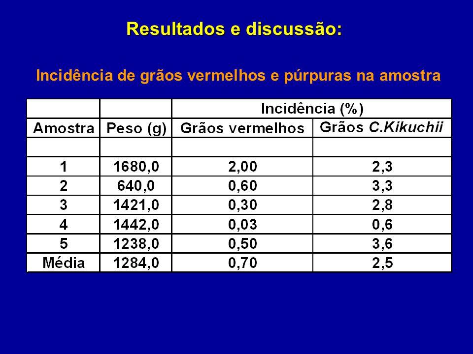 Incidência de grãos vermelhos e púrpuras na amostra Resultados e discussão: