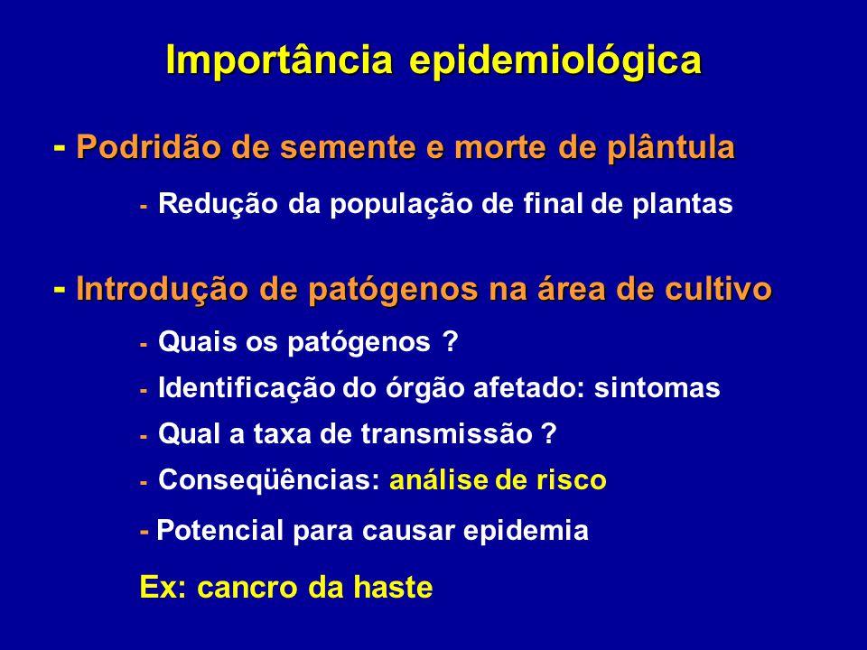Importância epidemiológica Podridão de semente e morte de plântula - Podridão de semente e morte de plântula - Redução da população de final de planta