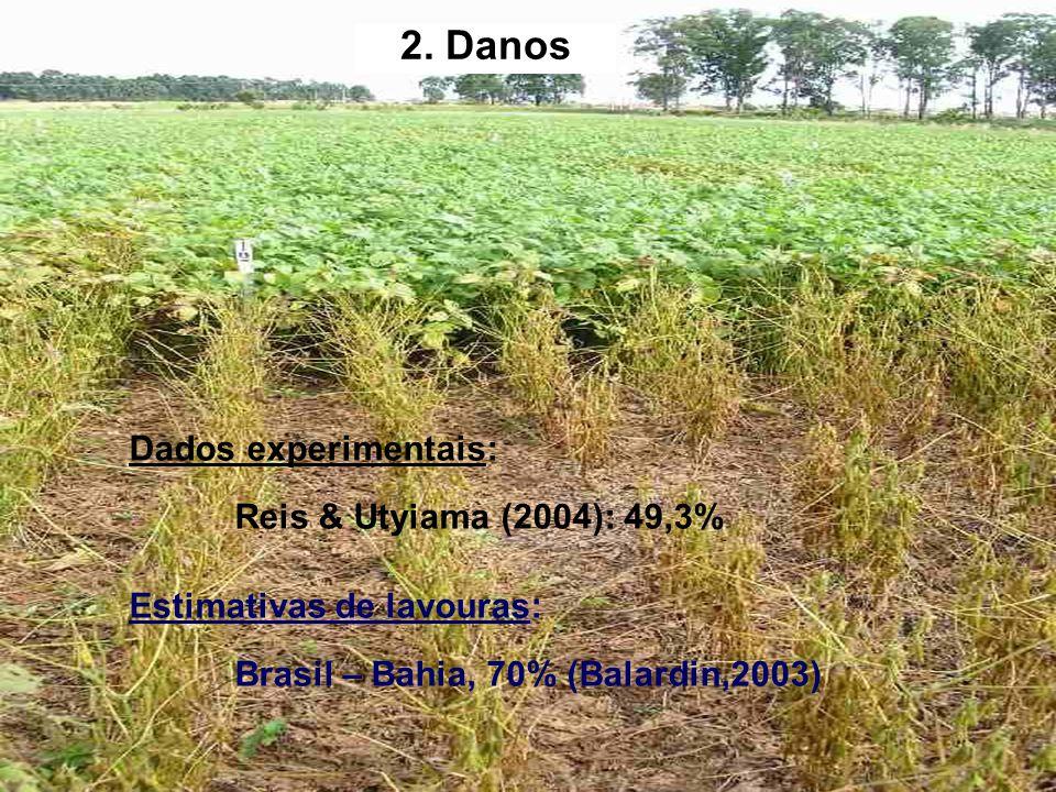 2. Danos Dados experimentais: Reis & Utyiama (2004): 49,3% Estimativas de lavouras: Brasil – Bahia, 70% (Balardin,2003)