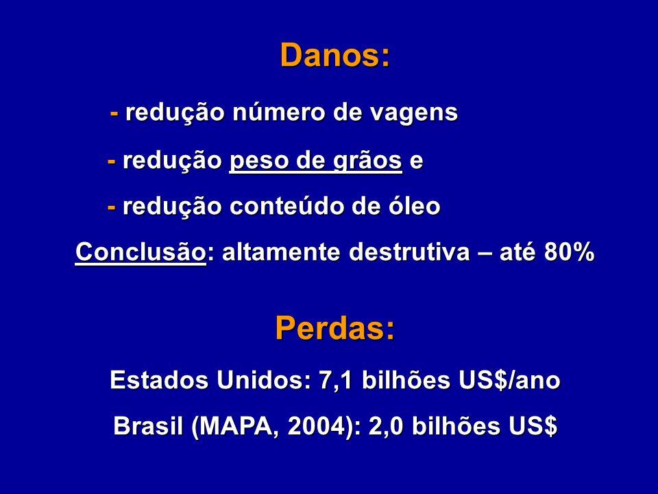 Danos: - redução número de vagens - redução número de vagens - redução peso de grãos e - redução peso de grãos e - redução conteúdo de óleo - redução