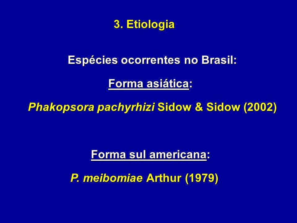 3. Etiologia Espécies ocorrentes no Brasil: Forma asiática: Phakopsora pachyrhizi Sidow & Sidow (2002) Forma sul americana: P. meibomiae Arthur (1979)