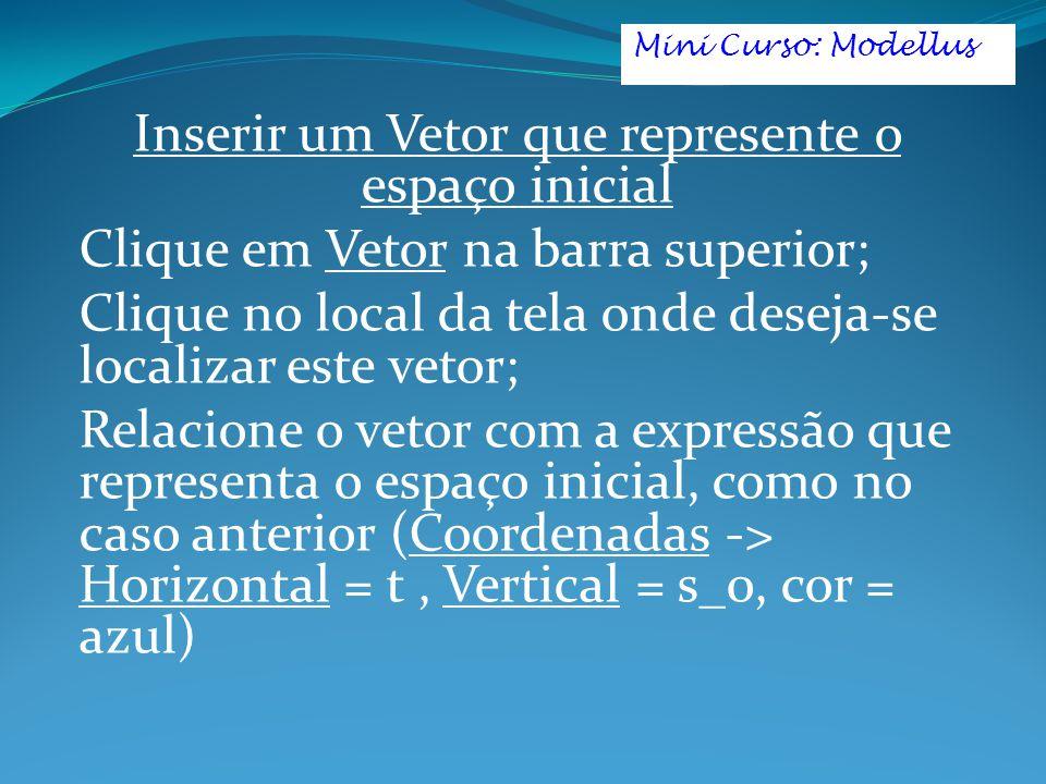 Inserir um Vetor que represente o espaço inicial Clique em Vetor na barra superior; Clique no local da tela onde deseja-se localizar este vetor; Relacione o vetor com a expressão que representa o espaço inicial, como no caso anterior (Coordenadas -> Horizontal = t, Vertical = s_0, cor = azul) Mini Curso: Modellus