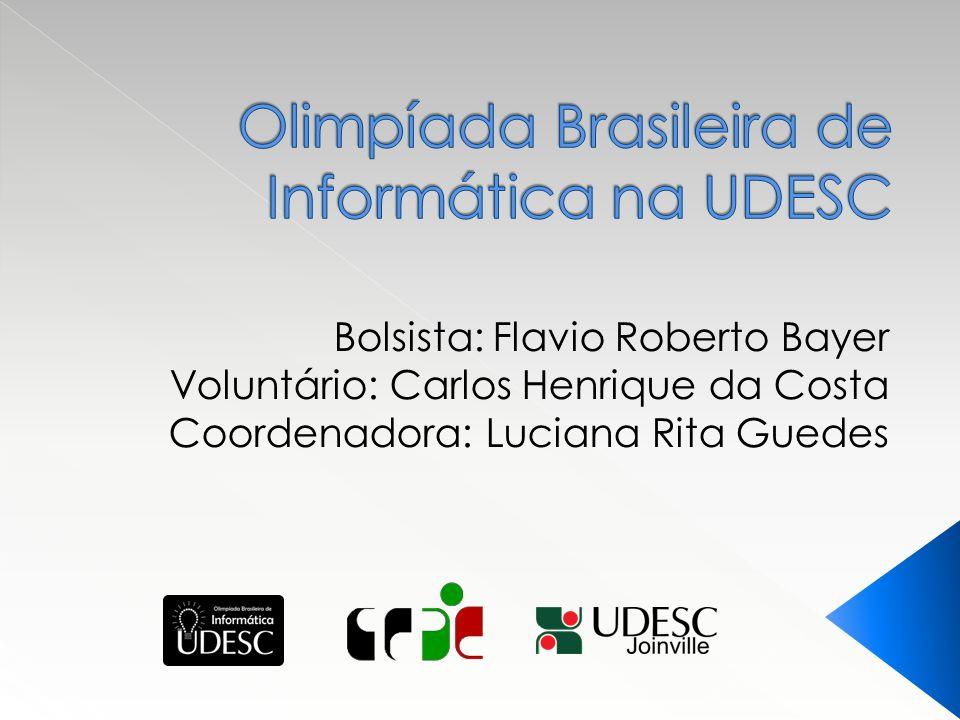 Bolsista: Flavio Roberto Bayer Voluntário: Carlos Henrique da Costa Coordenadora: Luciana Rita Guedes