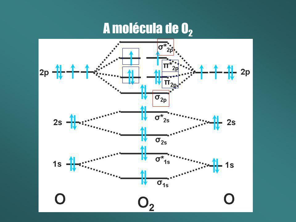 A molécula de O 2