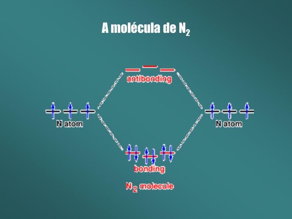 A molécula de N 2