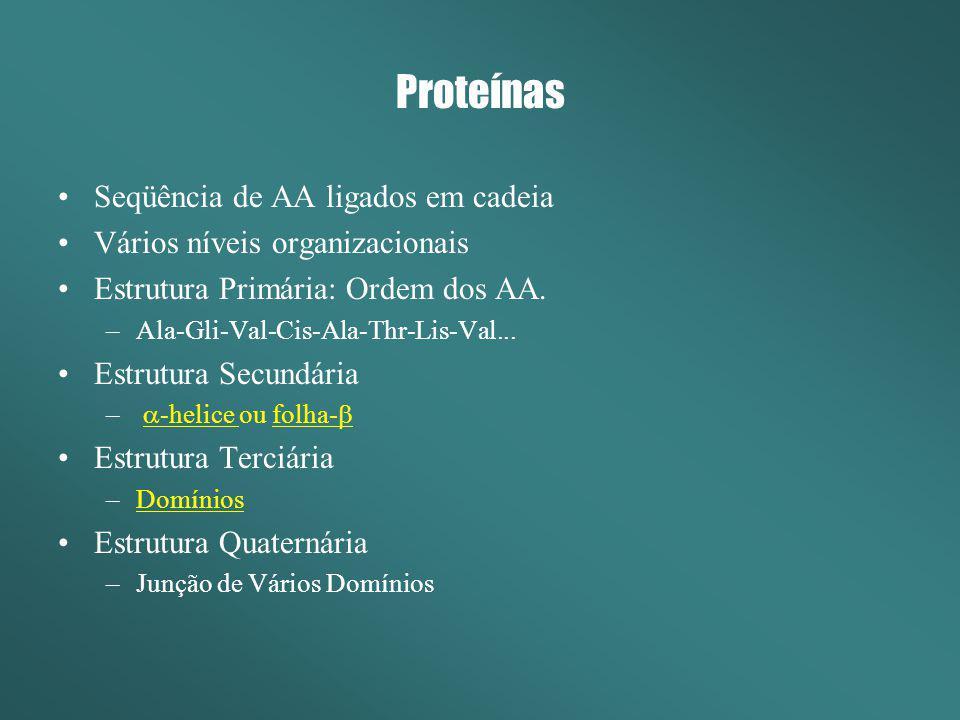 Proteínas Seqüência de AA ligados em cadeia Vários níveis organizacionais Estrutura Primária: Ordem dos AA. –Ala-Gli-Val-Cis-Ala-Thr-Lis-Val... Estrut