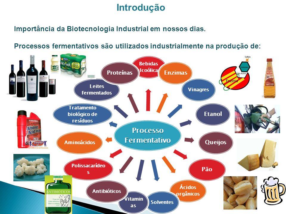 Introdução Importância da Biotecnologia Industrial em nossos dias. Processos fermentativos são utilizados industrialmente na produção de: Processo Fer