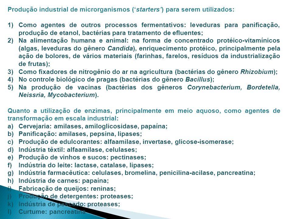 Produção industrial de microrganismos (starters) para serem utilizados: 1)Como agentes de outros processos fermentativos: leveduras para panificação,