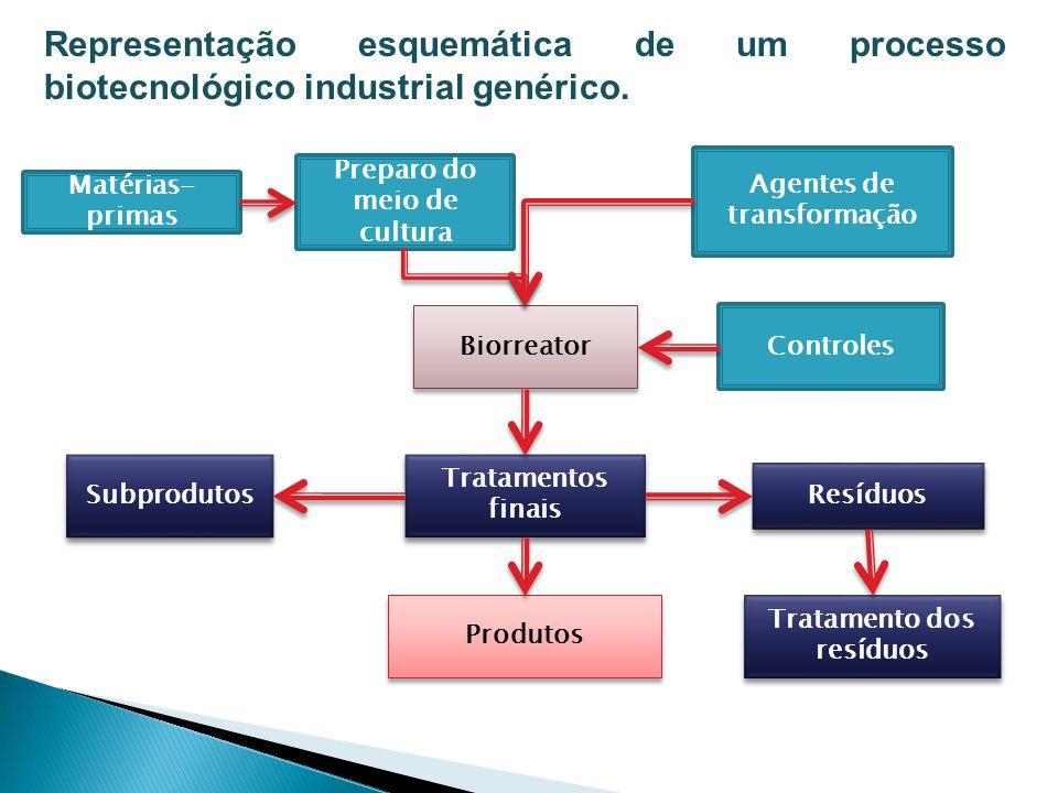 Representação esquemática de um processo biotecnológico industrial genérico. Matérias- primas Biorreator Preparo do meio de cultura Agentes de transfo
