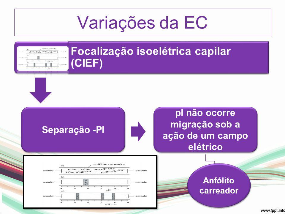 Focalização isoelétrica capilar (CIEF) Separação -PI pI não ocorre migração sob a ação de um campo elétrico Anfólito carreador Anfólito carreador Vari
