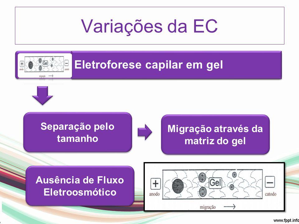 Eletroforese capilar em gel Separação pelo tamanho Migração através da matriz do gel Variações da EC Ausência de Fluxo Eletroosmótico